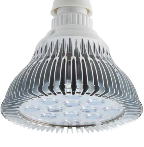 ABI 12W PAR38 Flowering Lamp