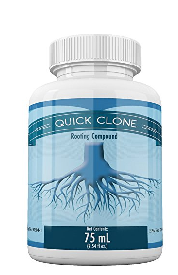 Quick Clone Gel - 75mL