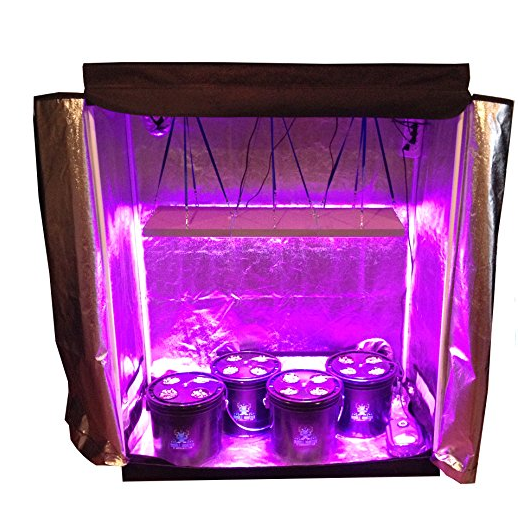 Abbaponics 16 Plant Complete Hydroponic Grow Tent Kit  sc 1 st  LED Grow Lights & Best Indoor Hydroponic Grow System Kits