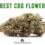 Best CBG Hemp Flower