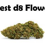 Best Delta 8 THC Flower Available